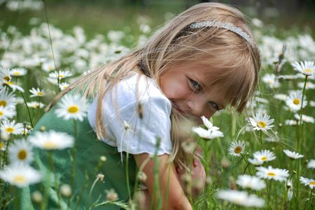 Child in a field of daisies. photo