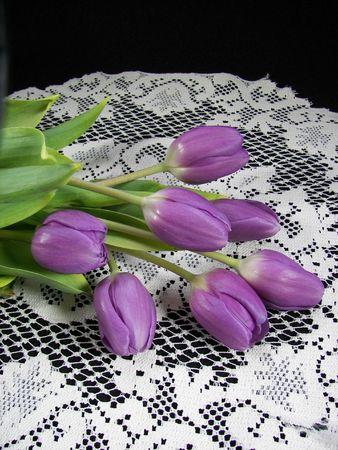 dutch: Purple tulips on Dutch lace.