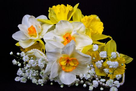 luster: Bouquet of daffodils and pearls.