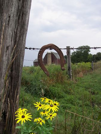 Old horseshoe hanging on a barb wire fence. photo