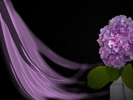 vase: Purple hydrangea with design on black.