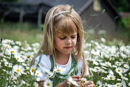 Little girl in a field of wild daisies. Stock Photo - 3355787