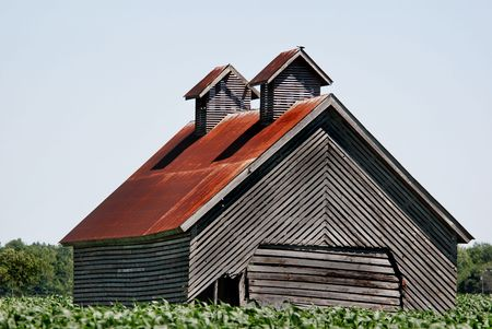 midwest: Abandoned corn crib in a midwest corn field.