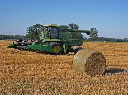 hay field: Agricoltura in campo con balle di fieno.