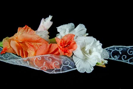 Gladiola bouquet with fancy ribbon.
