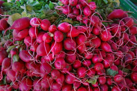 Bunch of radishes in a pile at the market. photo
