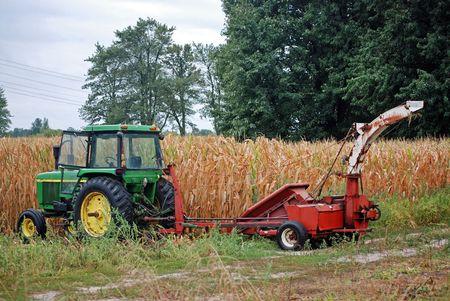 Farm equipment in a cornfield. Foto de archivo
