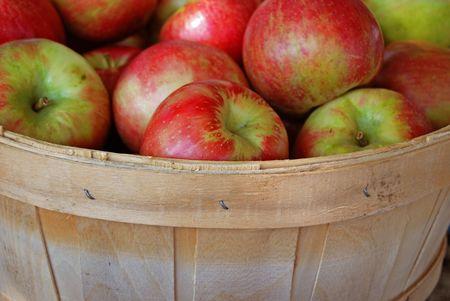 sheen: Autumn apples in bushel basket. Stock Photo
