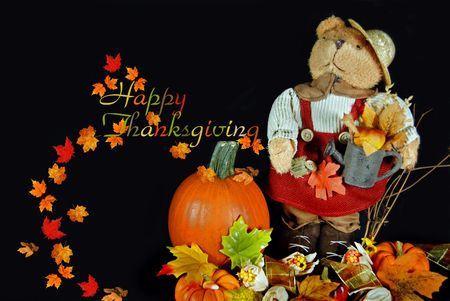 Teddy bear in a Thanksgiving display. photo