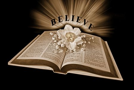 セピア色のトーンでオープンな神聖な聖書のラッパスイセン。 写真素材