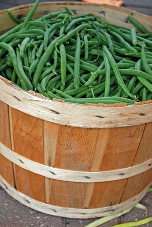 bushel: Freshly picked green beans in bushel basket.