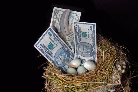 Money and eggs with feather in bird nest.