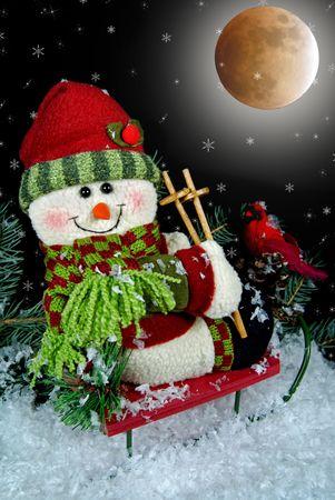 Christmas snowman on a sled under a full moon. photo
