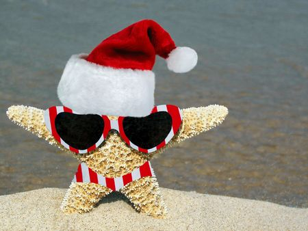 Starfish in a new Christmas outfit. photo