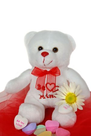 White teddy bear on netting with daisy and candy hearts. Stock Photo - 4118895