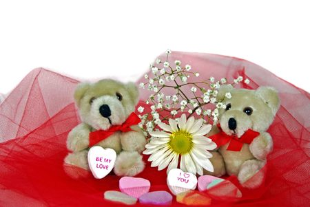 Twin teddy bears with daisy and candy hearts on red netting. Stock Photo - 4150987