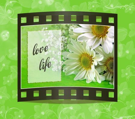 Film frame picture of a bouquet of daisies.