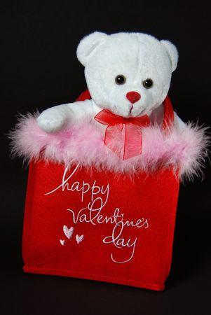 Teddy bear in a valentine bag. Stock Photo - 4208130