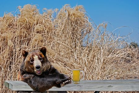old desk: Happy bear with mug of beer on picnic table.