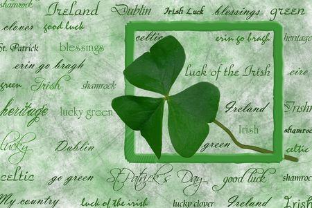 beveled: Irish shamrock in framework.