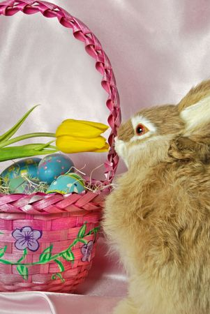Easter bunny with eggs and tulip in basket.