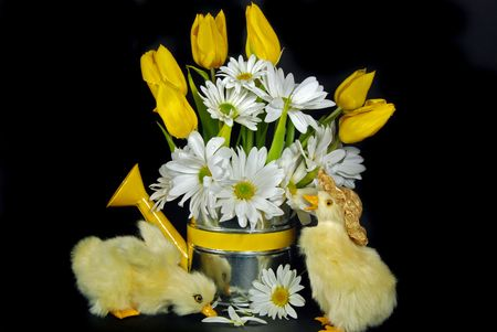 Ducklings with spring bouquet. Stock Photo - 4569842