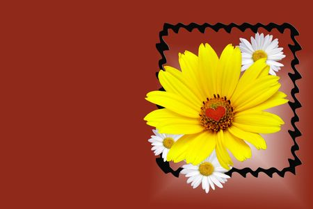 beveled: Summer daisies in fancy frame on gradient red background.