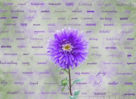 single word: Single dahlia with words dedicated to mothers. Stock Photo