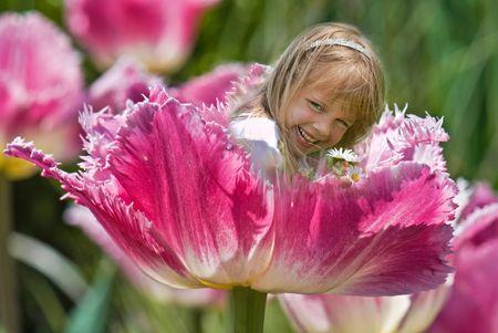 dutch girl: Little girl nestled in a Dutch spring tulip.