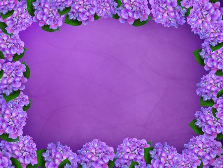 グラデーションの背景に紫のアジサイの境界線。