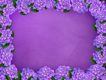 Purple hydrangea border on a gradient background.