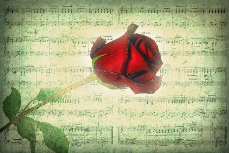 long stem: Long stem rose on sheet music in vintage texture. Stock Photo