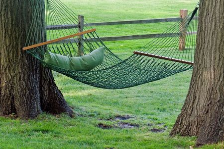 taut: Green hammock between two old oak trees.