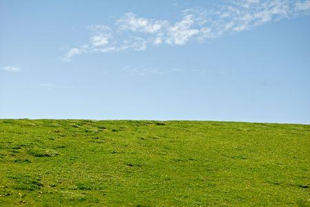 meets: Where green grass meets sky.