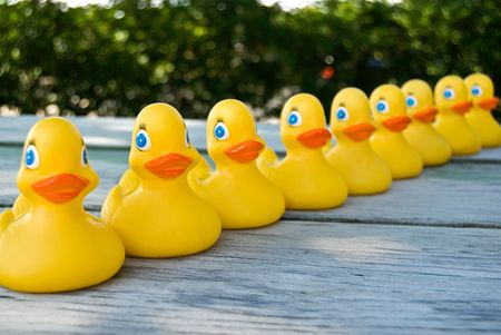 Row of rubber ducks on a weathered wooded tabletop. photo