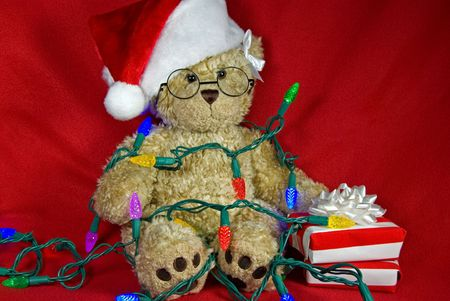 Teddy bear tangled in holiday lights. Stock Photo - 5903365