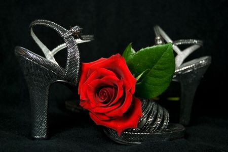 Red rose on silver party shoes. Reklamní fotografie - 6129883