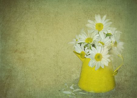 Broken daisy in a bouquet with texture.