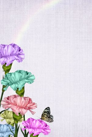 the carnation: Pastel carnation bouquet with rainbow and butterfly. Stock Photo