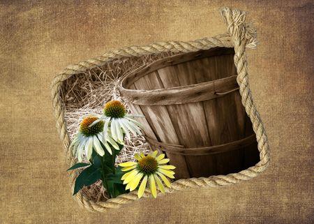 bushel: Cone flowers and bushel basket in rope frame.