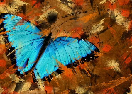 morpho: Blue Morpho butterfly on grunge abstract background.