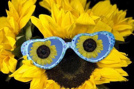 Fun sunglasses on sunflower. Banco de Imagens