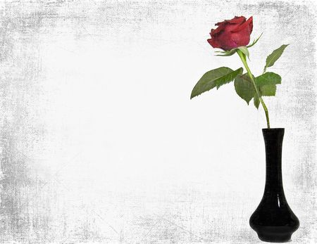 red rose: Single red rose in black vase with silver texture.