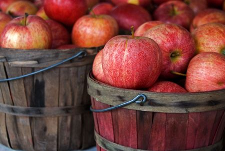 Autumn apples in bushel baskets.