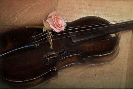 Single rose on vintage violin with textured effect. Reklamní fotografie