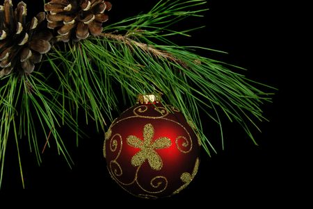 luster: Fancy red ornament hanging from pine bough. Stock Photo