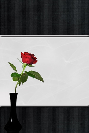 Single red rose in black vase on silver and black striped background. photo