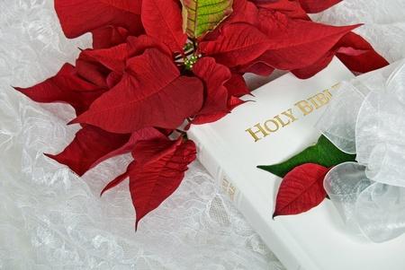 bible flower: Poinsettia bouquet on white wedding Bible.
