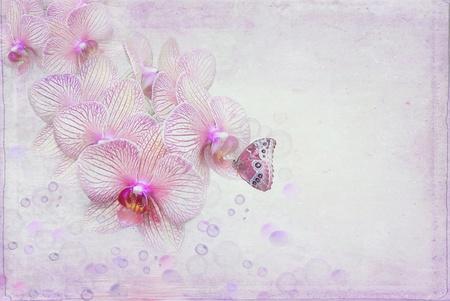 Butterfly en bellen met orchidee bloeit.