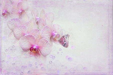 Butterfly and bubbles with orchid blooms. Foto de archivo